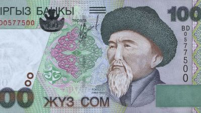 Kyrgyz central bank struggles to halt som's rapid depreciation