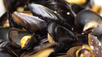Croatia, Slovenia in new diplomatic row over mussel farm