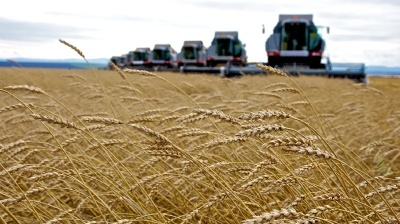 COMMENT: Trouble unearthed at Russian Agricultural Bank
