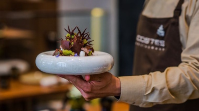 Good to be Hungary as Bocuse d'Or final comes to Budapest