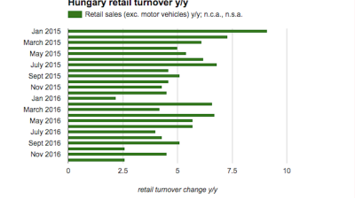 Hungarian retail sales growth decelerates in December